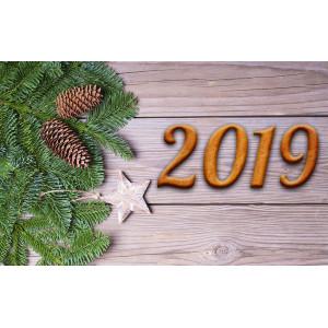 С Новым Годом 2019 и Рождеством!