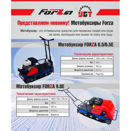 Мотобуксировщик FORZA 9,0 л.с. с электростартером